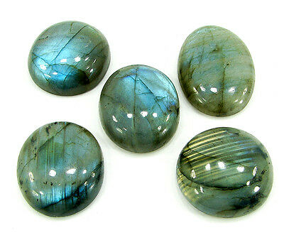 191.00 Ct Natural Labradorite Cabochon Loose Stone Wholesale Lot of 5 Pcs- 10200