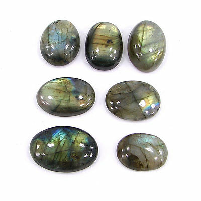 100.00 Ct Natural Labradorite Loose Cabochon Gemstone Lot of 7 pcs - 15055