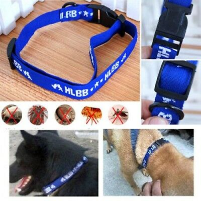 Adjustable Dog's 4 Month Control Anti Fleas Ticks&Mosquitoes Collar Elimination