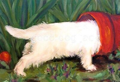 """West Highland Terrier ACEO WESTIE PRINT Painting """"Still Looking"""" Dog Art RANDALL"""