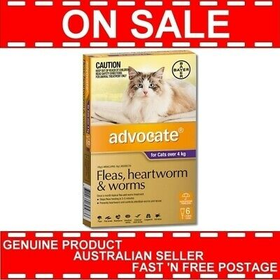 Advocate Purple Pack for Cats Over 4 Kg 6 Pipettes Heartworm Flea Prevention