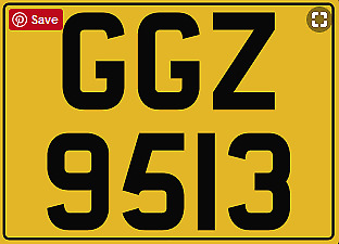 GGZ 9513 - Dateless Number Plate - Horses, Gee Gees, Horsebox, Horse Trailer Box
