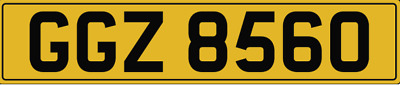 GGZ 8560 - Dateless Number Plate - Horses, Gee Gees, Horsebox, Horse Trailer Box
