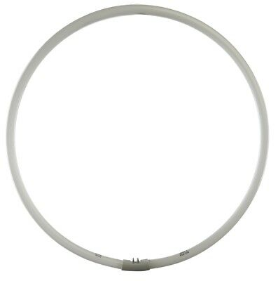 Diva Ring Light Replacement Bulb for Nova Series - 5400K Super Nova Replacement