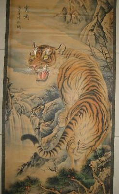 Chinese Beautiful Museum Scroll Painting of Tiger