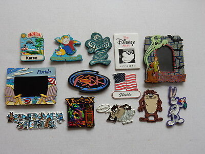 One Selected Souvenir Fridge Magnet Florida Universal Studios Disney Warner Bros