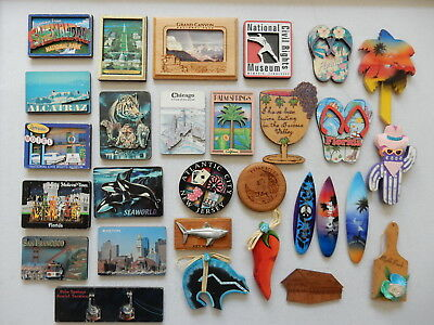 One Selected Plywood Souvenir Fridge Magnet from The United States