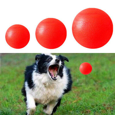 Pet Dog Toy Training Chew Play Indestructible Fetch Bite Toys Solid Rubber Ball