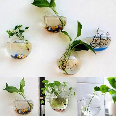 Pot Plant Wall Mounted Hanging Bubble Bowl Fish Tank Aquarium Home Decoration