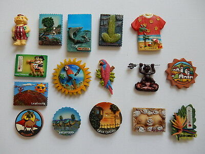 One Selected 3D Souvenir Fridge Magnet from Lanzarote Canary Islands Spain