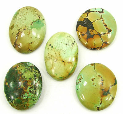 160.10 Ct Natural Tibet Turquoise Loose Cab Gemstone Wholesale Lot 5 Pcs- 17795