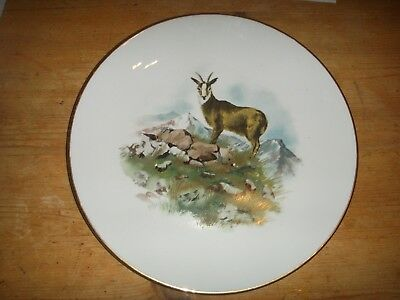 Vintage 1963 Royal Worcester Oven to Tableware Mountain Goat Large Plate & THREE PIECES Of Royal Worcester Oven To Tableware - £15.00 | PicClick UK