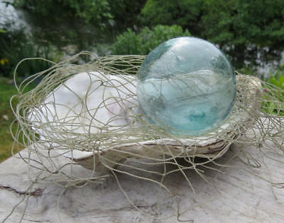 "Japanese Glass Fishing Float 2"" Aqua w/ Net & Oyster Shell Display Tiki Beach"