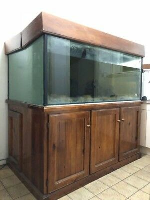 Large Xl Fish Tank 840L With Cabinet Aquarium
