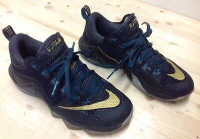 795a6b2f082 Lebron James Earned 23 Men s Size US 8 Basketball Shoes in Great Condition
