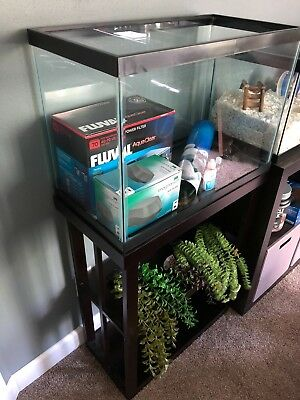 20 Gallon Aquarium with Stand, Filter, and Accessories