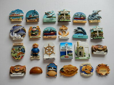 One Selected 3D Souvenir Fridge Magnet from Cornwall