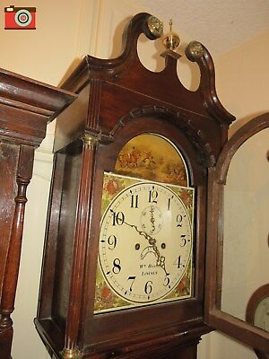 Longcase Clock, 8 Day. Hewson, Lincoln 1830. Good Condition. Tiger Scene On Face
