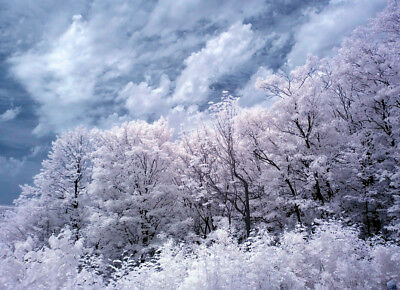 Photo, wallpaper digital picture free shipping worldwide, infrared blue sky