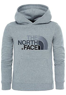 (Small, TNF Light Grey Heather) - The North Face Drew Peak Kids Outdoor Hoodie