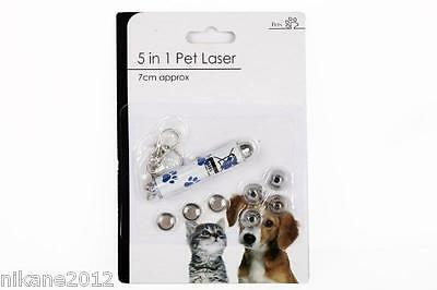 5 in 1 Pet Laser Pen Toy & Keyring (Batteries Included) cat dog lazer free post