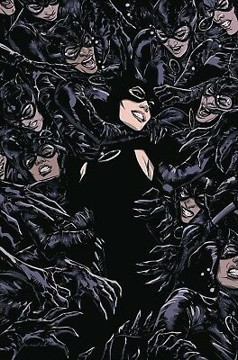 Catwoman #2 Cover A (Preorder Release Date 8-01-18)