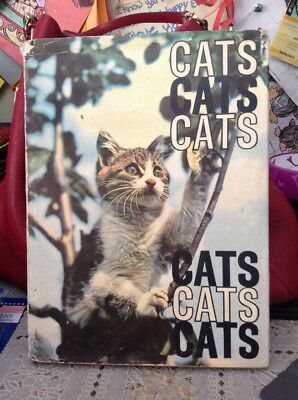 Cats, Cats, Cats, Cats, Cats, Cats Book By John R. Gilbert / Hard Cover / Used