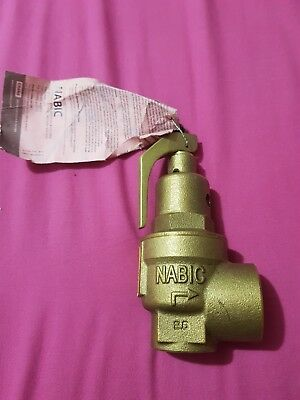 NABIC Safety Valve Pressure Relife Valve  FIG500 6Bar DN20