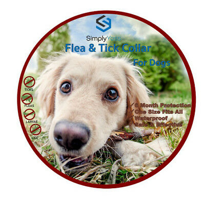2 Flea&tick collars for dogs, Safe and Effective,Waterproof & Fully Adjustable