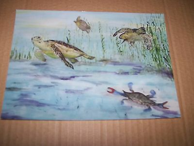 "Photograph of Original Painting ""Sea Turtles and Friends"" by Washabaugh 5"" x 7"""