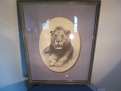 Vintage Charcoal Lion Drawing! Signed!