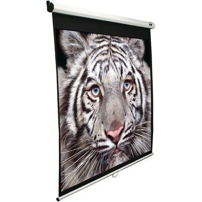 """Elite Screens M100V 100"""" Manual Pull-down B Series Projection Screen (4:3 format"""