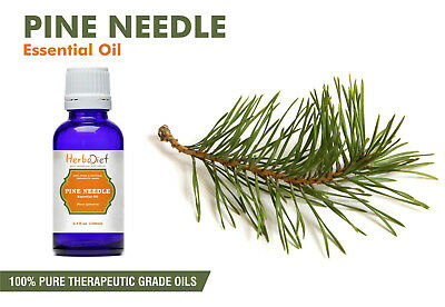 Pine Needle Essential Oil 100% Pure Natural Aromatherapy Therapeutic Grade Oils