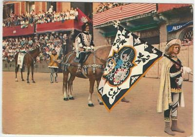 Horse Postcard- Siena The Palio