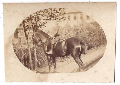 Victorian Boy on Horse Back - Antique Albumen Photograph c1890