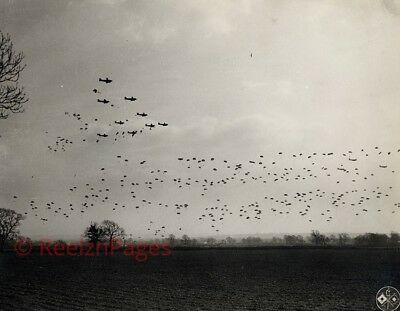 New Art Print WWII Iconic Photo 11X17 Paratroopers Over Normandy
