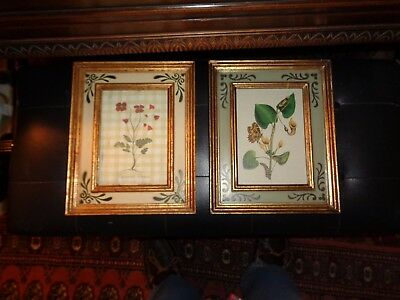 Pair of botanical prints: Papaver rhoeas & Silpper Plant: Nicely framed--great