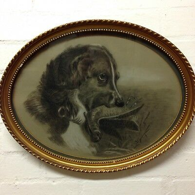 Fine Antique Charcoal And Pastel Oval Portrait Of A Spaniel With Bird In Mouth