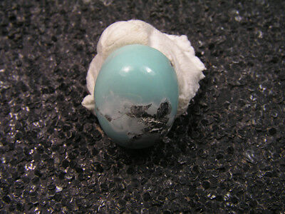7.60ct 100% natural HuBei loose spiderweb turquoise cabochon gemstone t1594
