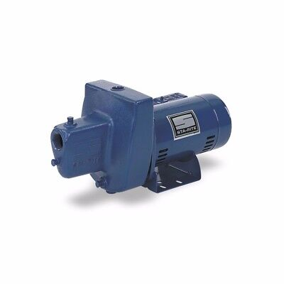 Sta-Rite SNE-L 1 HP 115/230 Volt Shallow Well Jet Pump, Cast Iron, 115V/230V