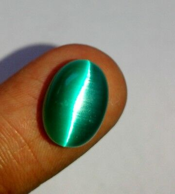 Beautiful Green Color Oval Cabochon Cats Eye 786