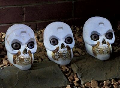Halloween Decoration Skull Heads X6 Individual Decorative Heads free delivery