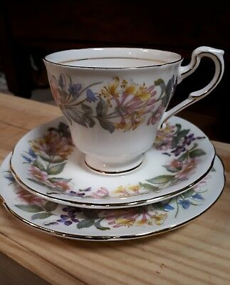 Lovely Vintage Paragon English China Trio Tea Cup Saucer Country Lane