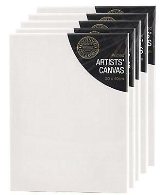 30 x 40 cm CANVAS STRETCHED ARTIST PRIMED BOX FRAMED 100% COTTON ART 12 x 16""