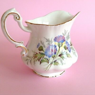 VINTAGE PARAGON 1960s STAFFORDSHIRE ENGLISH BONE CHINA THISTLES MILK JUG FLOWERS