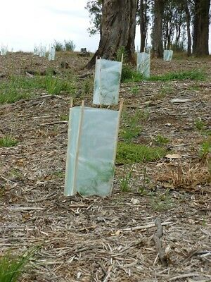 Tree Guard 800mm x 500mm x 125um Plastic Sleeve Seedling Plant Protection Cover