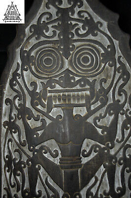 Stunning Fine Carved Dayak Shield, Borneo