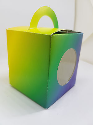 Rainbow Coloured Cup Cake Boxes