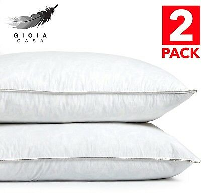Gioia Casa NEW Twin Pack 1KG Duck Feather Pillow Premium Luxury Comfort Cotton
