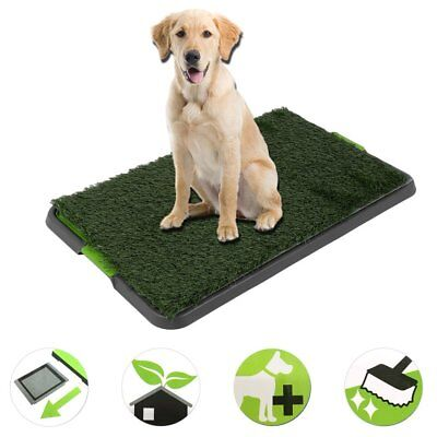 Large Indoor Pet Dog Grass Mat Potty Training Pad Toilet Loo Clean Pad Tray SY